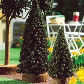 Træer i potter udendørs